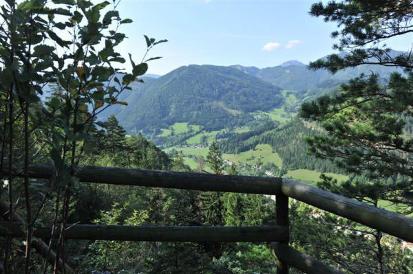 Ausblick Falkenstein